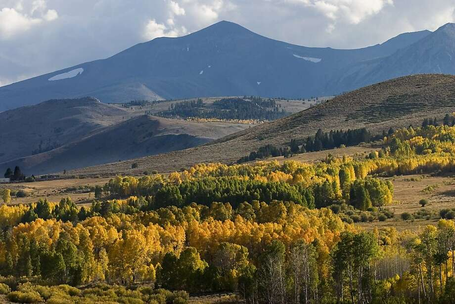 ** FILE ** Autumn descends on the eastern Sierra mountains in this Oct. 2, 2004, file photo.  The eastern Sierra's don't have the wild variety of autumn colors that the East Coast has, nevertheless the craggy mountains during Indian summer are an awesome sight with yellow and gold carpets creeping up to the tree-line. (AP Photo/Lara Hartley) Photo: Lara Hartley, AP