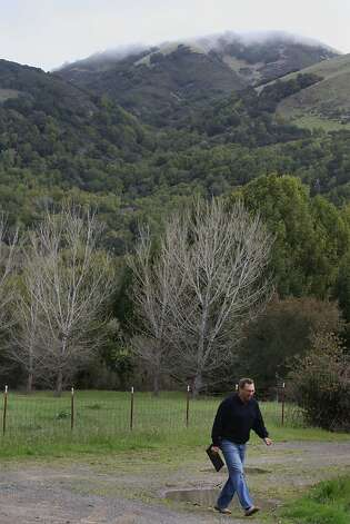 George Lucas will be building a 270,000 square foot digital media production compound on Grady Ranch in San Rafael, Calif.,  just past the cyprus trees seen in the background as neighbor and environmental consultant Carl Fricke walks on the planned driveway to the complex on Friday, March 30, 2012. Photo: Liz Hafalia, The Chronicle