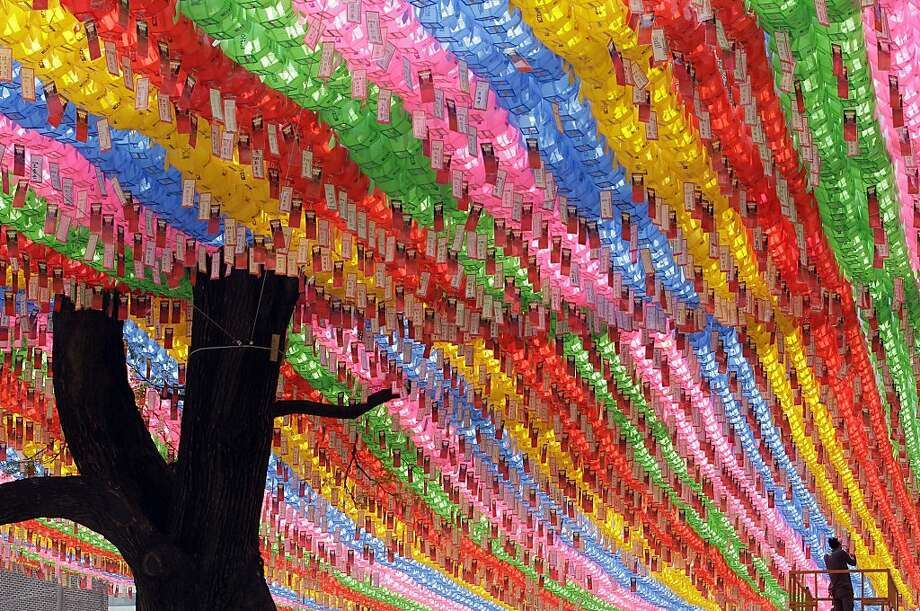 A South Korean worker attaches a devotee's name tag with their wishes on a lantern,  in the preparation for the birthday celebration of Buddha, which falls on May 28, at Jogye temple in Seoul, South Korea, Tuesday, May 8, 2012.  About one-third of South Korea's 48 million people are Buddhists. (AP Photo/Lee Jin-man) Photo: Lee Jin-man, Associated Press