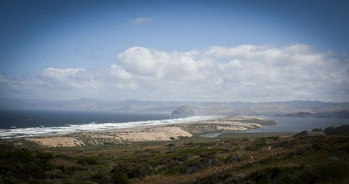 The view of Morro Bay from Montana de Oro State Park.