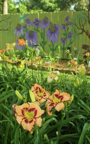 Loris Garrett created the daylily seedlings in the foreground. Artistic Karen Garrett painted the permanent blooms on the garden fence. Photo: Gary Fountain, Freelance / Copyright 2012 Gary Fountain.