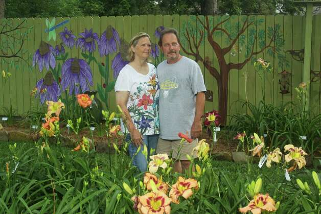 Karen and Loris Garrett have filled their Cypress garden with daylilies, including Loris' seedlings in the foreground. Karen painted the fence with permanent blooms. Photo: Gary Fountain, Freelance / Copyright 2012 Gary Fountain.