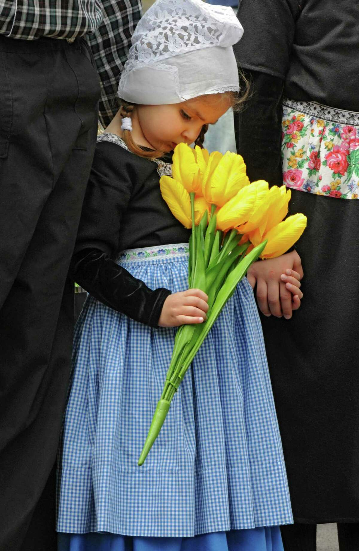 Callista Schermerhorn, age 3 of Guilderland, stops to smell the tulips while dressed in Dutch costume at the 2012 Tulip Festival Street Scrubbing Friday, May 11, 2012 in Albany, N.Y. (Lori Van Buren / Times Union)