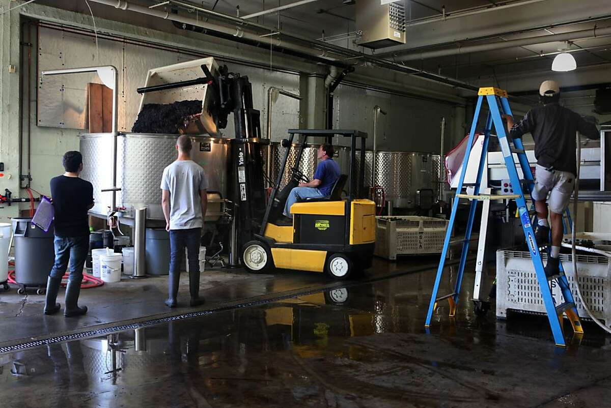 Destemmed grapes being placed in a tank at August West winery in San Francisco, Calif., on Wednesday, September 21, 2011.