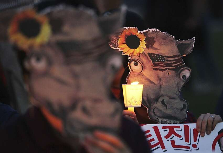 South Korean protesters wear cow masks, symbolizing imported U.S. beef, during a candle rally against import of U.S. beef in Seoul, South Korea, Saturday, May 12, 2012, after the USDA announced April 24 that America's fourth case of mad cow disease was discovered in a 10-year-old cow. (AP Photo/Ahn Young-joon)