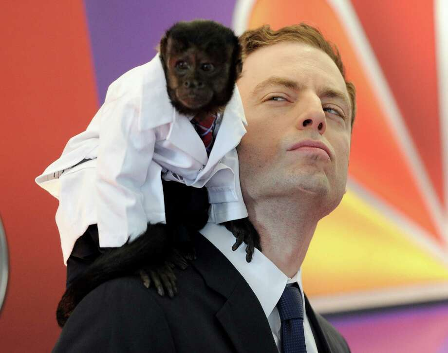 """Animal Practice"" co-stars Crystal the monkey and actor Justin Kirk arrive for the NBC network upfront presentation at Radio City Music Hall, Monday, May 14, 2012 in New York. (AP Photo/Evan Agostini) Photo: Evan Agostini, Associated Press / AGOEV"
