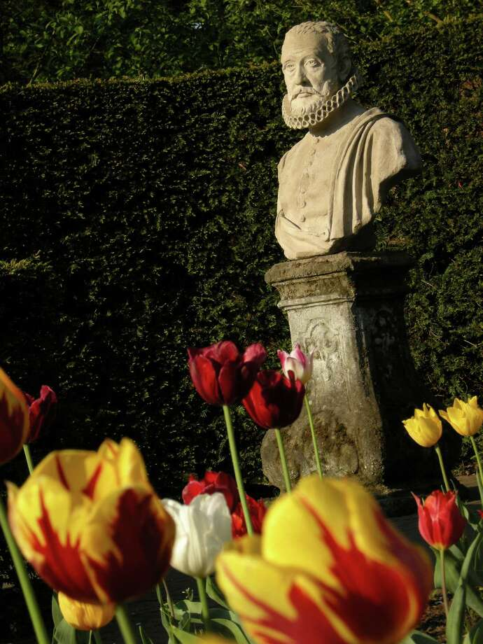 A bust of the botanist Carolus Clusius, credited with introducing tulip bulbs to Europe, overlooks Keukenhof's display of historic varieties. Photo: Molly Glentzer