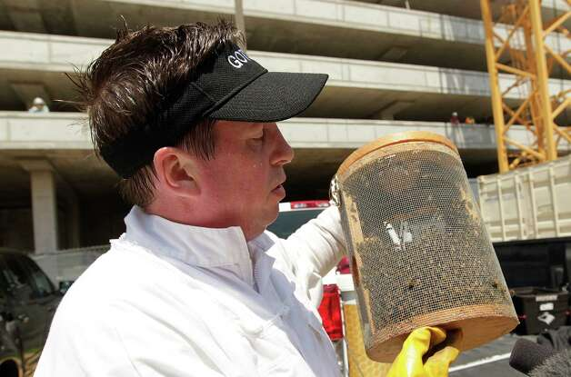 Claude Griffin, owner of Gotcha Pest Control, carries several thousands of bees removed from a high rise under construction along 5300 block of Brownway St. in the Galleria area on Wednesday, May 16, 2012, in Houston. A construction worker was stung this morning by bees, and management called Gotcha Pest Control to safely remove bees from the high rise construction site along 5300 block of Brownway St. in the Galleria area. Photo: Mayra Beltran, Houston Chronicle / Houston Chronicle