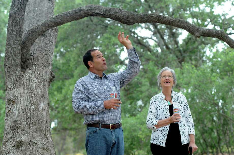 Botanist Damon Waitt gives San Antonio resident Mollie Steves Zachry a first walk-through of the Texas Arboretum that bears her name at the Lady Bird Johnson Wildflower Center in Austin on May 4, 2012. The 16-acre Mollie Steves Zachry Texas Arboretum will display all the species of oak trees native to Texas. Billy Calzada / San Antonio Express-News Photo: BILLY CALZADA, STAFF / SAN ANTONIO EXPRESS-NEWS