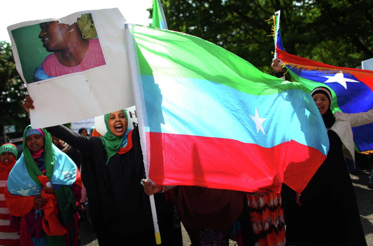 Ethiopian Oromo immigrants protest against Ethiopian Prime Minister Meles Zenawi.