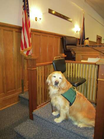Service dog Rosie, the first judicially approved courtroom dog in New York, will be at ECAD's (Education Canines Assisting with Disabilities) Denim Heels Boots Tails fundraising event on June 16 at the waterfront home of Jennifer and Daniel Gressel on Cedar Cliff Road in Riverside from 5:30 to 10 p.m. Photo: Contributed Photo