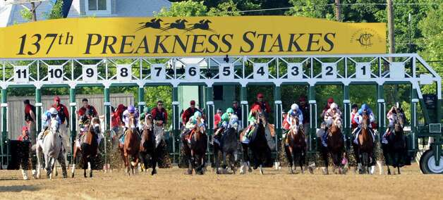 Horses leave the gate at the start of  the 137th running of The Preakness Stakes at Pimlico in Baltimore, MD. May 19, 2012.     (Skip Dickstein / Times Union) Photo: SKIP DICKSTEIN