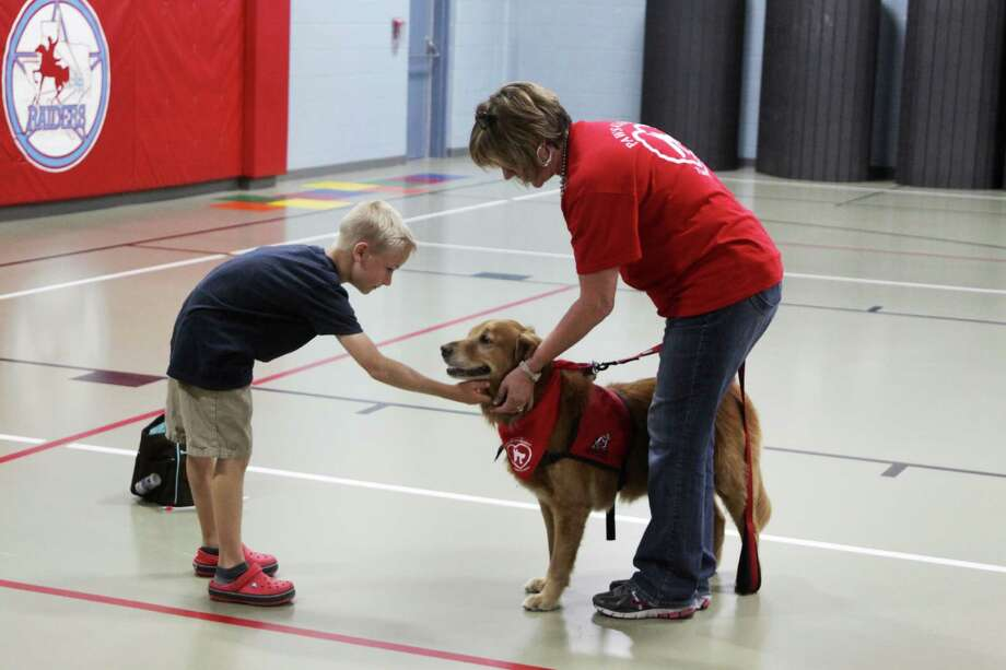 Lumberton Primary student Camden Hartzell learns about dog safety during a program at his school on May 17. Hartzell shares a moment with Sammy, a golden retreiver trained by Rebecca Moss. Photo: David Lisenby, HCN_Dogs