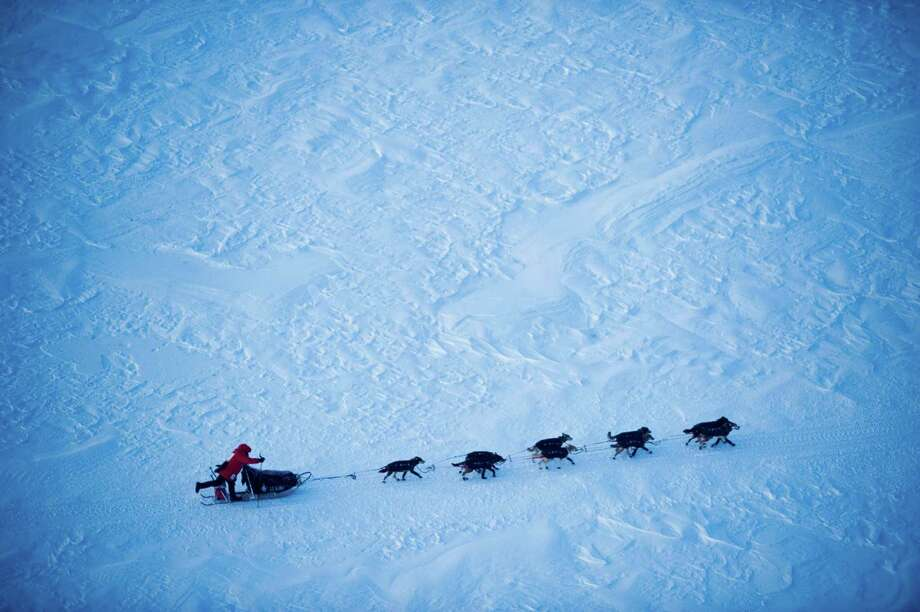 Iditarod front-runner Dallas Seavey makes his final drive toward Nome, Alaska, during the Iditarod Trail Sled Dog Race on Tuesday, March 13, 2012. (AP Photo/Anchorage Daily News, Marc Lester) Photo: Marc Lester / Anchorage Daily News