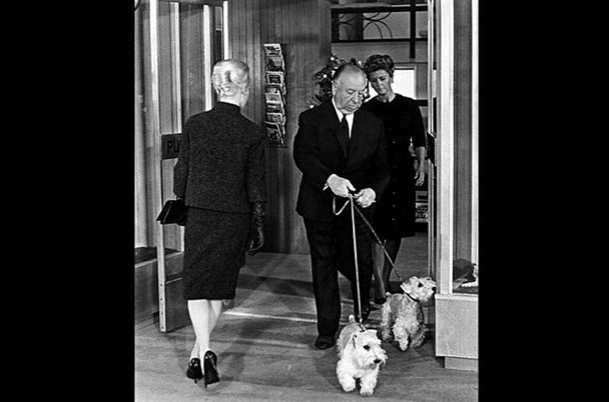 """Alfred Hitchcok walks his Sealyham terriers ina cameo appearance in """"The Birds."""" Tippi Hedren is on the left."""