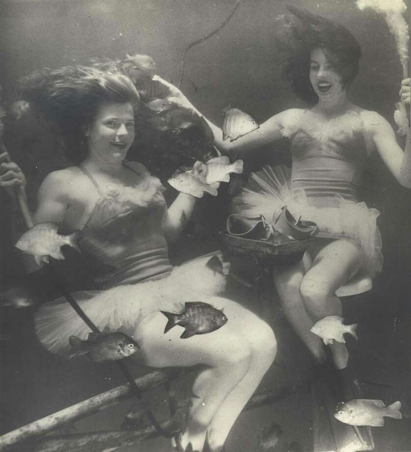 """Mermaids"" used to do underwater performances at the old Aquarena Springs resort and theme park near San Marcos.  Photo: COURTESY"