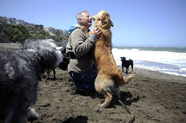 "Dog trainer and walker with ""The Love of the Dog"" Glenn McTaggart of Petaluma regularly brings his dogs to Baker Beach.  Heal the Bay released it's annual report on California beaches and water quality at Baker Beach in San Francisco Thursday May 24th, 2012 Photo: Michael Short"