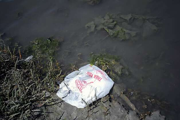 A plastic bag is seen in the water near Candlestick Point.  Heal the Bay released it's annual report on California beaches and water quality Thursday May 24th, 2012 Photo: Michael Short, Special To The Chronicle