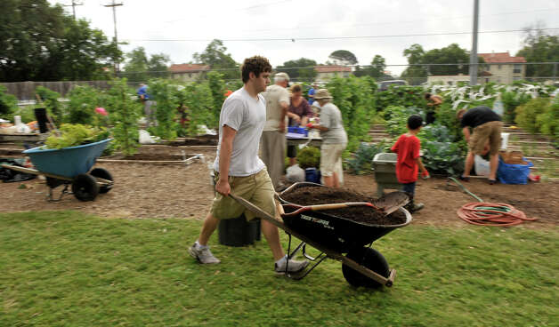 Paul Wells moves a wheelbarrow of  compost in the Children's Garden at the San Antonio Botanical Gardens Saturday morning. The compost was created by the city composting program. Photo: Robin Jerstad, Robin Jerstad/For The Express-News