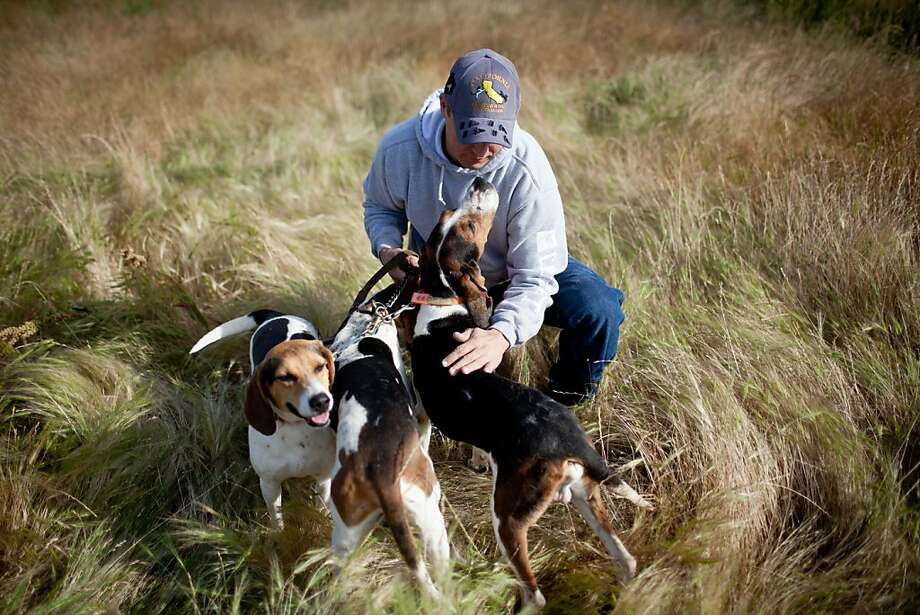Josh Brones, president of the California Houndsmen for Conservation, poses for a portrait with his Treeing Walker hounds at his home in Calif., May 14, 2012. Photo: Max Whittaker/Prime, Special To The Chronicle