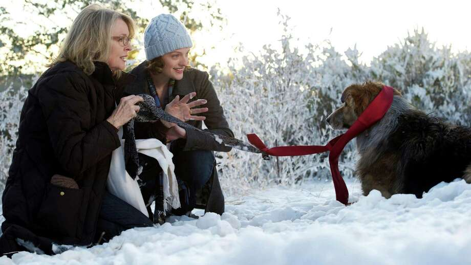 "Left to Right: Diane Keaton as Beth, Elisabeth Moss as Grace and Kasey as Freeway the dog in ""Darling Companion"" Photo:   WILSON WEBB, Sony Pictures Classics"