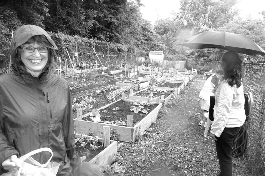 Patty Sechi stands proudly before the Armstrong Court Community Organic Garden, which recently earned her an award from the Audubon at Home initiative for making the garden more wildlife friendly. Sechi directs the planting at the garden. Photo: Anne W. Semmes