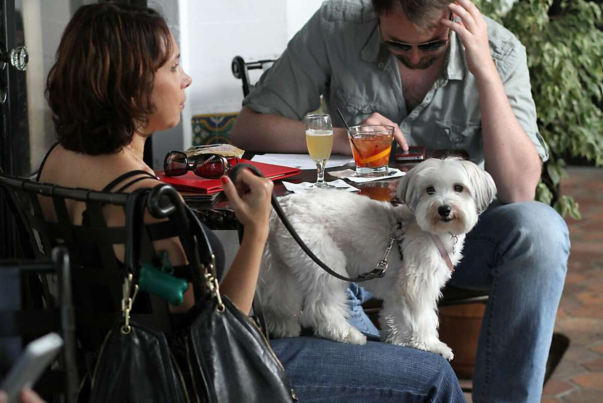 April Zanelli and her dog, Charlotte, enjoy happy hour at the Cypress Inn on Friday, May 18, 2012. Carmel is one of the most dog friendly places you will find in California. From the beaches to the stores, everywhere you go in Carmel so can your dog.