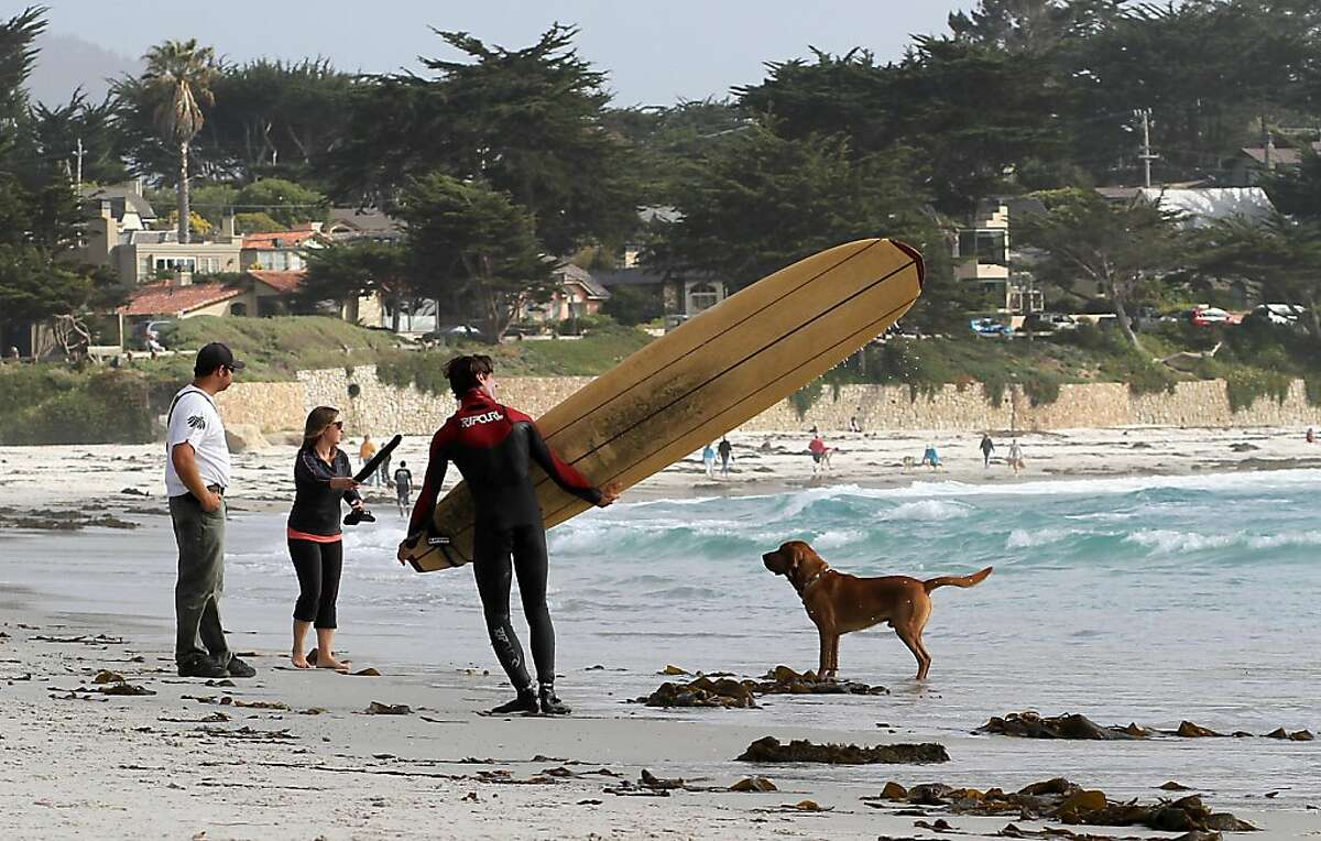 Stu Harney ( far left) and Allison Reese (left) play their dog Pete as a surfer leaves the beach on Friday, May 18, 2012. Carmel is one of the most dog friendly places you will find in California. From the beaches to the stores, everywhere you go in Carmel so can your dog.