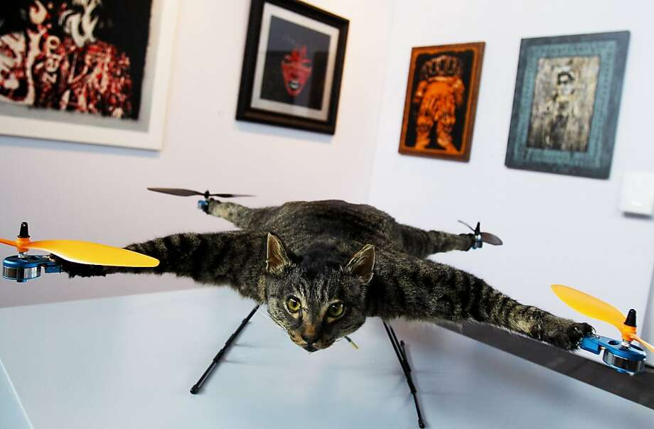 The day Orville decided to do something about the birds getting away: Dutch artist Bert Jansen calls his sculpture Orville the flying helicopter cat. Orville is of course stuffed, as no flesh-and-blood feline would ever put up with this. (KunstRai art fair in Amsterdam.) Photo: Ade Johnson, AFP/Getty Images