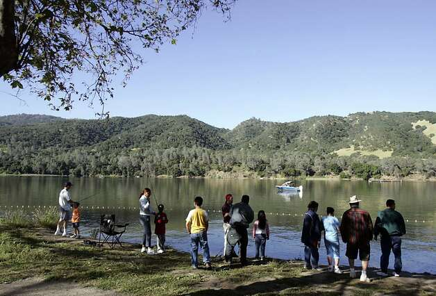 Families line the shore at Lake Del Valle Regional Park in Livermore, fishing for rainbow trout. Photo: Paul Chinn, SFC