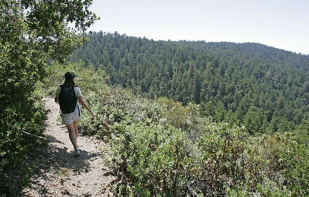 Butano Redwoods State Park offers a remote Bay Area getaway. It's a little work to get to the campsites, but it's worth it. Photo: Michael Macor, SFC
