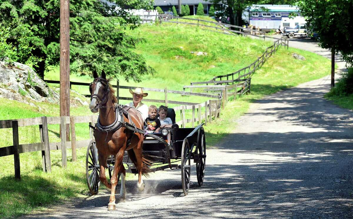 Chris Maher drives his sons, Cody, 3, and Jack, 6, in a buggy pulled by Simon, 20, a former racehorse, in Newtown Friday, June 1, 2012.
