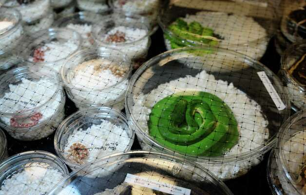 Many different snakes for sale are displayed in small containers. Photo: LINDSEY WASSON / SEATTLEPI.COM