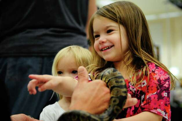 Siena Kadera, 3 1/2, has fun with a baby ball python held by Joe Hackler. Photo: LINDSEY WASSON / SEATTLEPI.COM