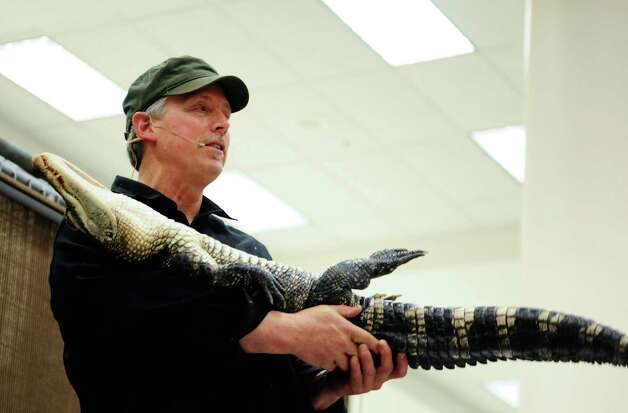 "Dave Coleburn with ""Predators of the Heart"" puts an alligator ""to sleep."" Photo: LINDSEY WASSON / SEATTLEPI.COM"