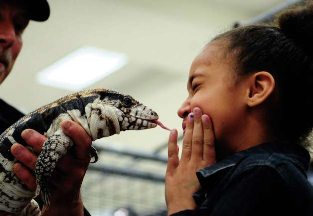 Chanel St. Claire, 8, puckers up as she gets kissed by a Red Tegue. Photo: LINDSEY WASSON / SEATTLEPI.COM
