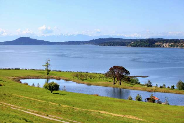 Trout pond on James Island. Photo: Courtesy Mark Lester And Alan Johnson/Sotheby's International Realty