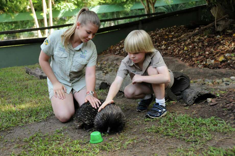 "Bindi Irwin, 13, and Robert Irwin, 8, children of the late animal adventurer Steve Irwin, pet an echidna during a taping of new series ""Growing Up Wild."" Photo: Growing Up Wild / Growing Up Wild"