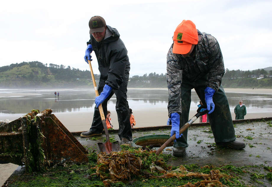 This handout photograph obtained courtesy of the Oregon Parks and Recreation (OPRD) and released June 7, 2012 shows a team of about a dozen staff and volunteers organized by the Oregon Department of Fish and Wildlife to remove marine organisms from the dock which landed on Agate Beach, Oregon, after drifting at sea following the March 11, 2011, earthquake and tsunami in Japan. Workers with shovels, rakes and other tools first scraped the structure clean, then briefly used low-pressure torches to sterilize the dock. The material was bagged and hauled up the beach well above the high tide line to store it temporarily.  Photo: -, AFP/Getty Images / AFP