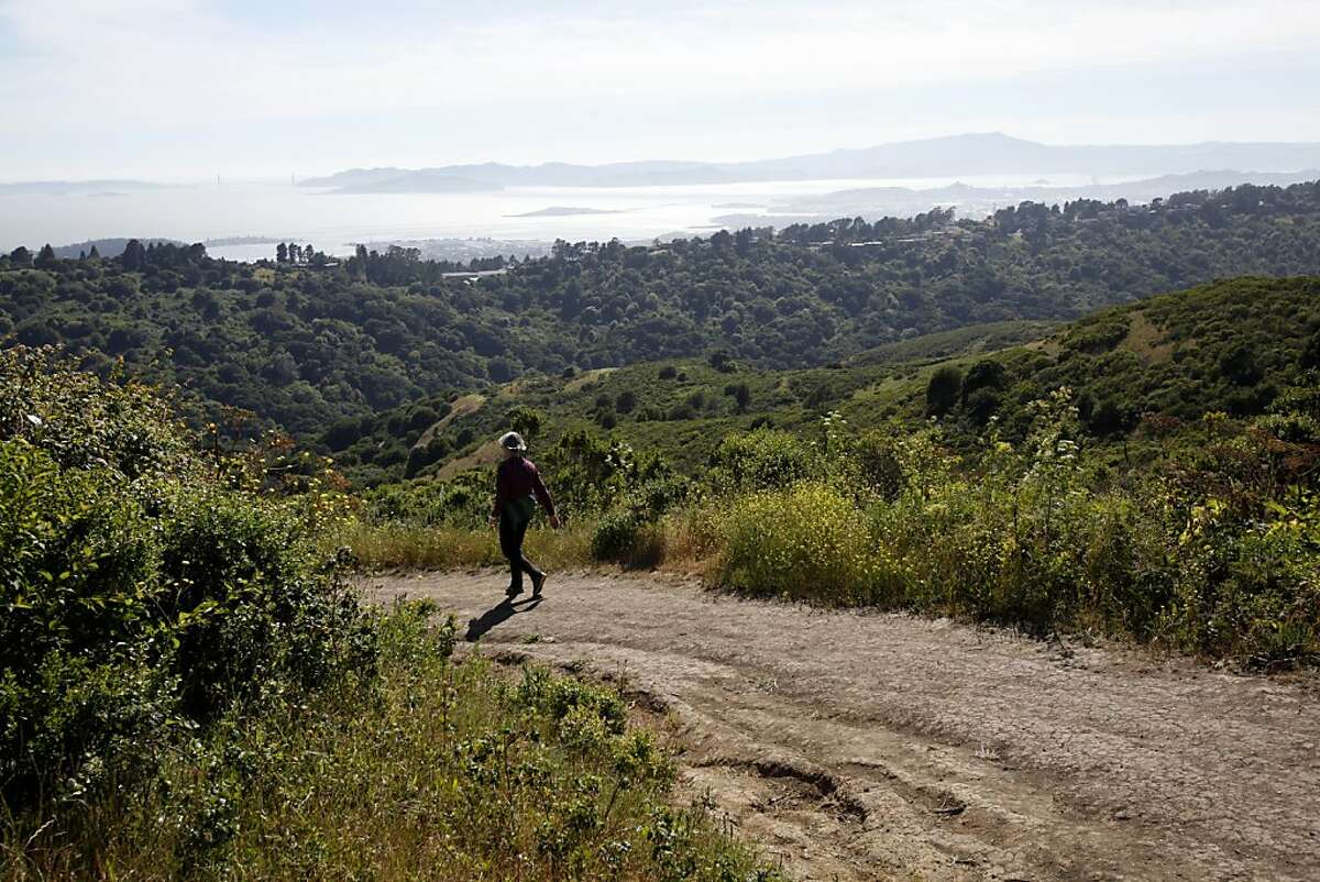 Hikers descend from the Rotary Peace Grove lookout on the Nimitz Way Trail at Inspiration Point in Berkeley, Calif. Sunday, June 3, 2012.
