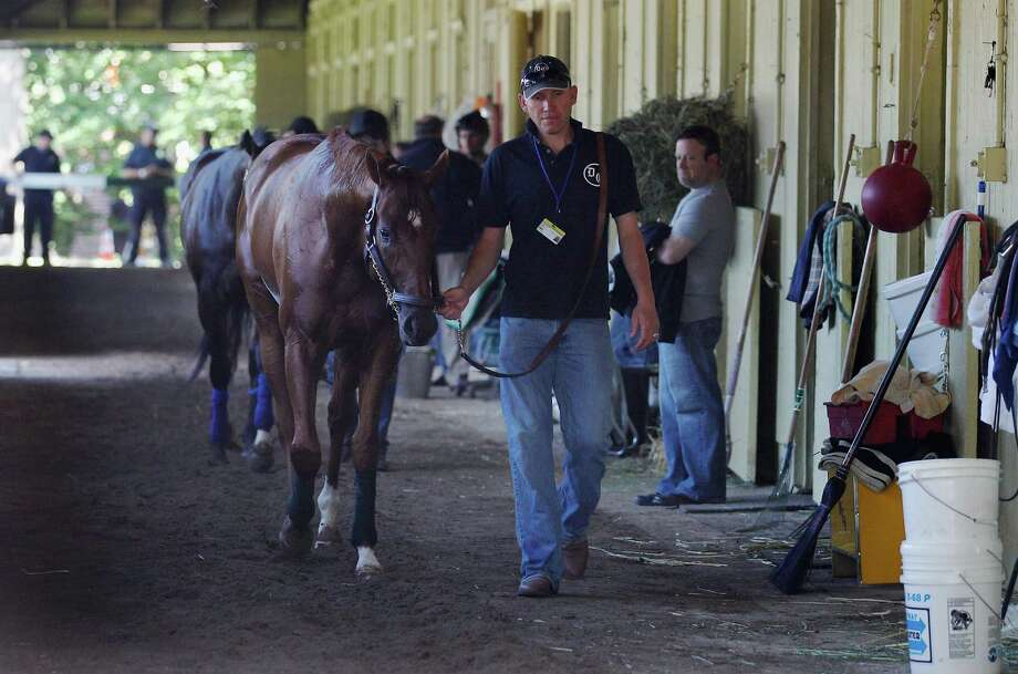 Hot walker Benjamin Perez takes I'll Have Another for a stroll in the detention barn, which is being criticized as an unneeded part of the Belmont scene. Photo: Rob Carr / 2012 Getty Images