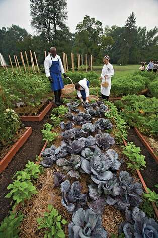 The White House kitchen team works in the garden. Photo: Quentin Bacon