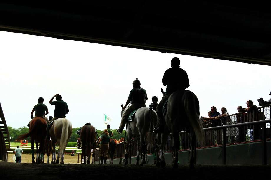 Horses head out to the track at  the 144th running of the Belmont Stakes at Belmont Park on June 9, 2012 in Elmont, New York. Photo: Al Bello, Getty Images / 2012 Getty Images