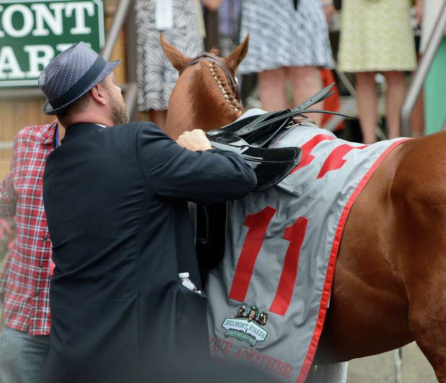 I'll Have Another is unsaddled for the final time by his trainer Doug O'Neil winner's circle during his retirement ceremony before The Belmont Stakes at Belmont Park in Elmont, N.Y. June 9, 2012.  (Skip Dickstein / Times Union) Photo: SKIP DICKSTEIN