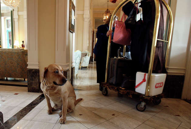 A guest leaves the Fairmount hotel as Luke Tips watches on Thursday December 7, 2006. Photo: JOHN DAVENPORT, SAN ANTONIO EXPRESS-NEWS / SAN ANTONIO EXPRESS-NEWS