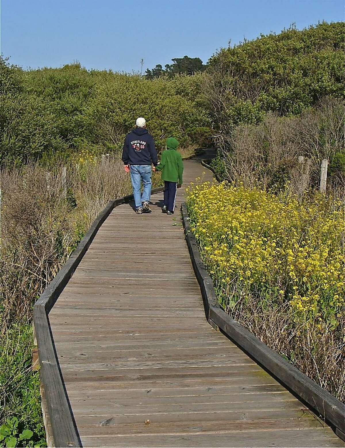 Visitors walk along the San Simeon Creek Trail.