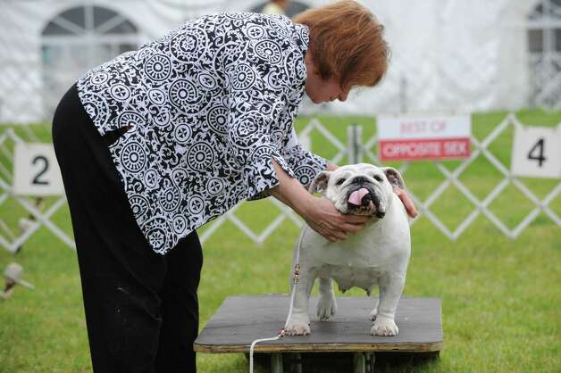 Linda Fiordiliso of West Islip, N.Y., and her Bulldog named Jasmine during the Greenwich Kennel Club 80th Dog Show at Taylor Farm Park in Norwalk, Saturday, June 9, 2012. Photo: Bob Luckey / Greenwich Time