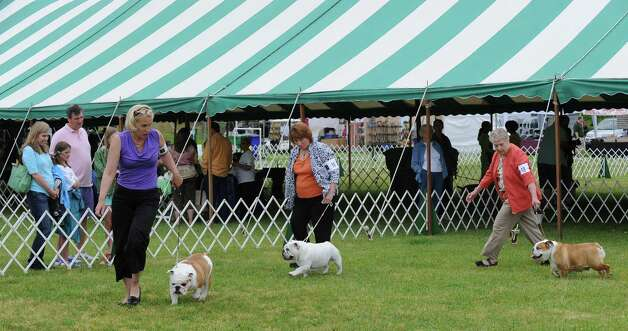 The Greenwich Kennel Club 80th Dog Show at Taylor Farm Park in Norwalk, Saturday, June 9, 2012. Photo: Bob Luckey / Greenwich Time