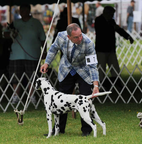 Michael Scott and his Dalmatian named Ian during the Greenwich Kennel Club 80th Dog Show at Taylor Farm Park in Norwalk, Saturday, June 9, 2012. Photo: Bob Luckey / Greenwich Time