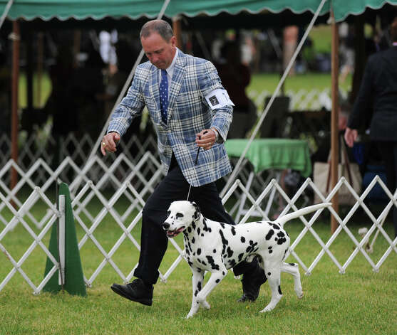 Michael Scott and his Dalmatian named Ian during judging at the Greenwich Kennel Club 80th Dog Show at Taylor Farm Park in Norwalk, Saturday, June 9, 2012. Photo: Bob Luckey / Greenwich Time